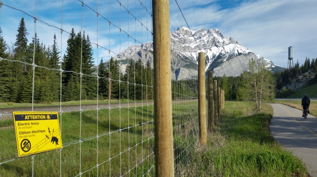 electric-fence-testing-in-Banf-NP
